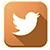 T4200-twittericon